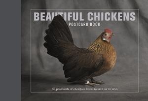 Beautiful Chickens Postcard Book