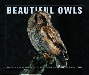 Beautiful Owls Portraits of Arresting Species from Around the World
