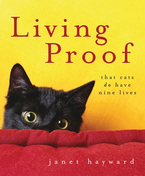 Living Proof That cats do have nine lives