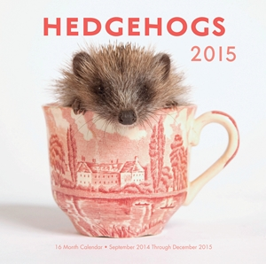 Hedgehogs 2015 16-Month Calendar September 2014 through December 2015